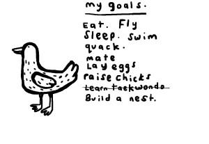 Goal Setting Bird