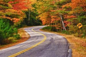 twiaty road