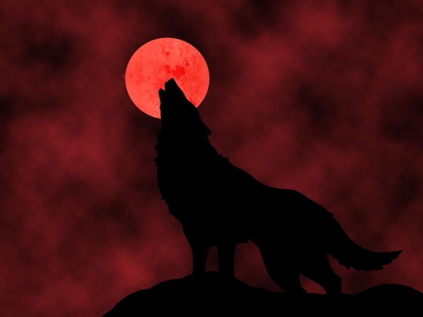 bloodmoon wolf