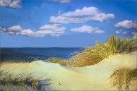 Cape_Cod_Sand_Dune